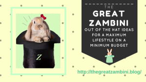 bunny with bow inside magician's top hat on yellow background, banner says Great Zambini Out of the Hat ideas for a Maximum Lifestyle on a Minimum budget